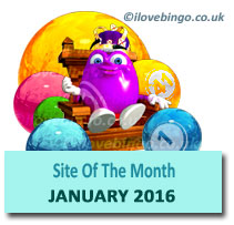 bingosite of the month January2016