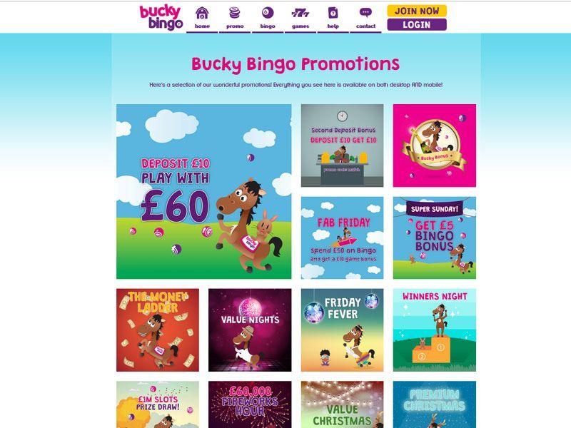 Bucky-Bingo-Promotions.jpg