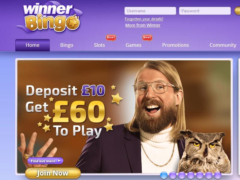 Winner Bingo Bonus Offer