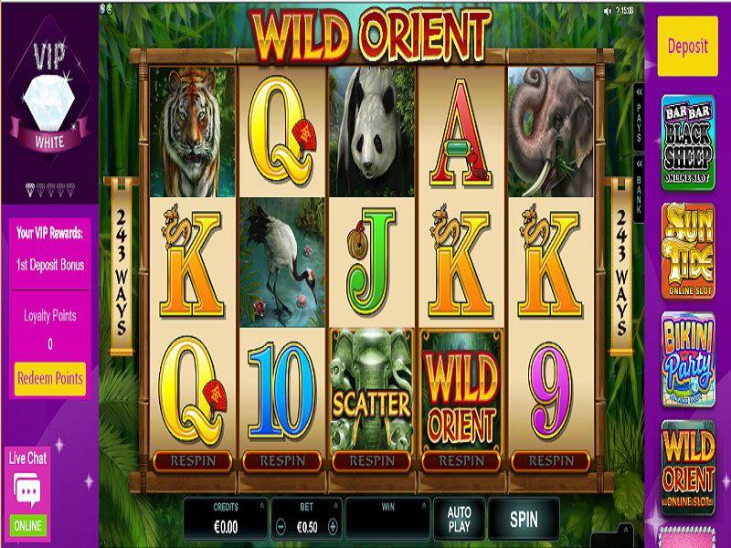 Bingo-Diamond-Slot-in-Play