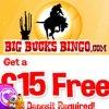 Big-bucks-bingo-logo