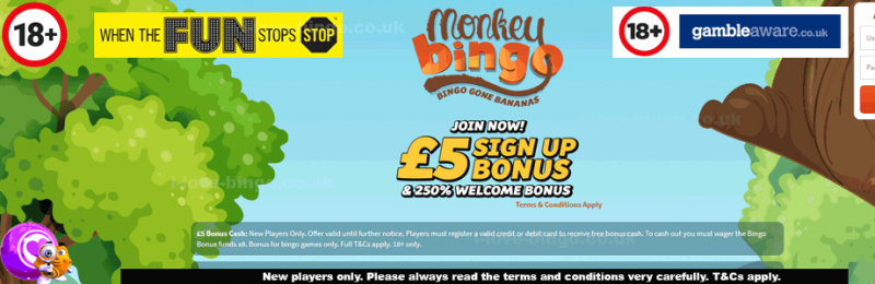 Monley-Bingo-review-cover-template.png