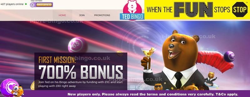 Ted-Bingo-review-cover.jpg