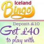 iceland-Bingo-Logo jpg