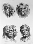Animal to human evolution drawings - Lion