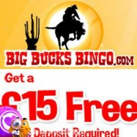 Big-bucks-bingo-logo
