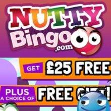 Nutty Bingo Logo & Review