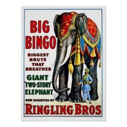 bigbingo elephant vintage circus poster
